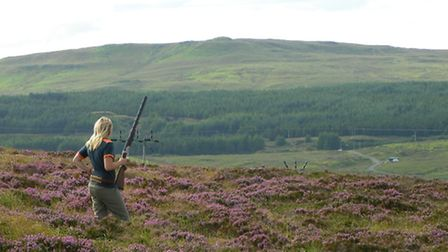 Careful and selective shooting results in a healthy population of grouse