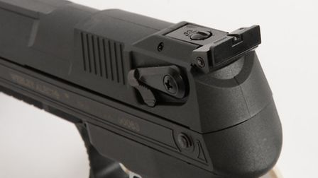 Standard open sights are fully adjustable.