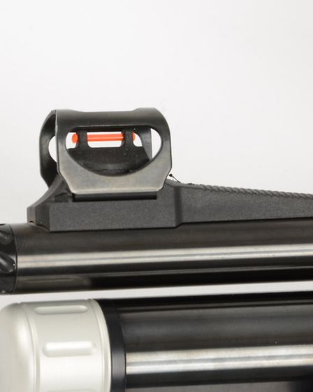 The open sights have a fibre-opic element