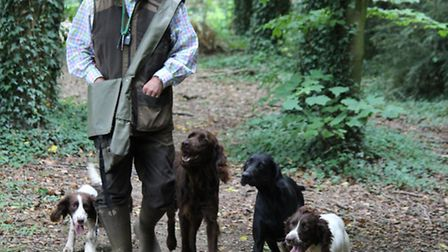 Refreshing your dog's heelwork will make life much easier in the field