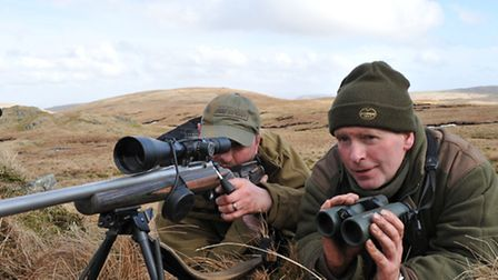 Hind stalking offers a cheaper alternative to the classic hill stalking