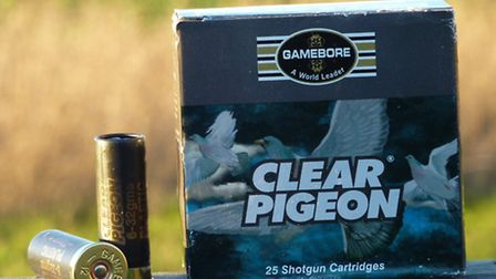 Gamebore Clear Pigeon