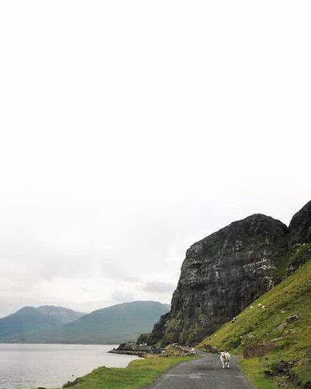 The uncrowded Mull landscape with narrow roads and stubborn woolly locals