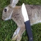 The process of turning a rabbit into a nutritious meal begins before you even pull the trigger.