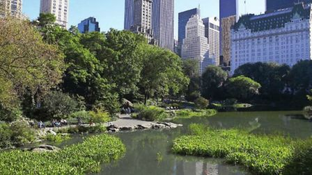 While you can lose yourself happily in Central Park, a little more care is required while flying