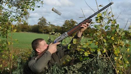 Specialist pigeon loads usually cost less than equivalent game cartridges