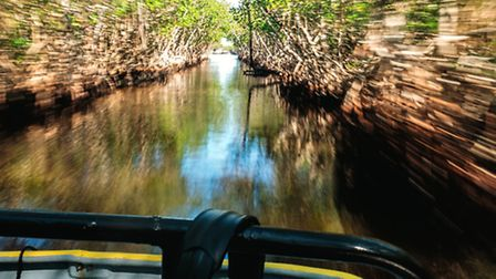 Whilst youre in the Everglades, an airboat ride is a must. Thirty five miles per hour never felt so