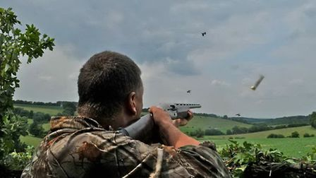 Are you pigeon decoy ready?