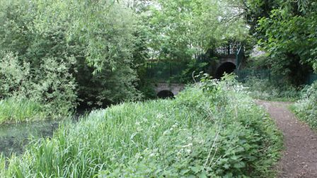 Cotswold Canals restoration goes on despite funding disappointment