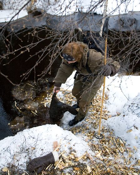 Erika climbs down to the waters edge and grabs the partly submerged beaver. A quick throw, then it i