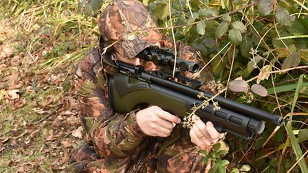 I like the green stock colour. It helps camouflage the gun