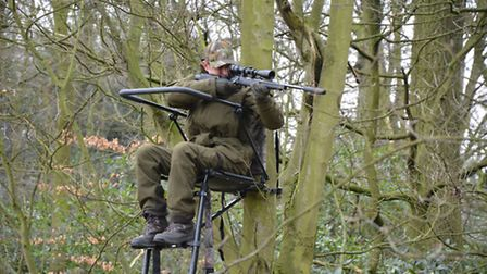 Plenty of space to move but the surrounding gun rest gives great versatility in shot positioning