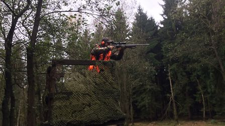 The best way to shoot boar is from a high seat