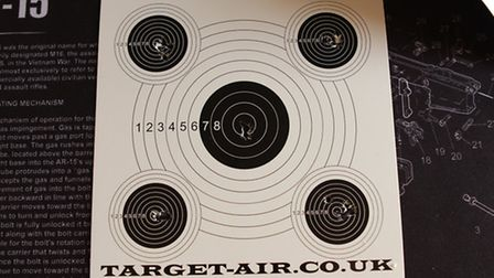 Targets with pellets unharmed, crushed, lipped, double-lipped and with the head scored, but which on