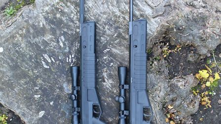 Two great options for black rifle fans