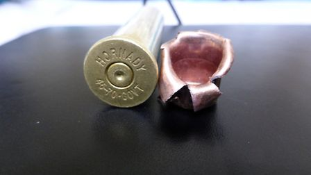 The 4570 govt round used on the bear