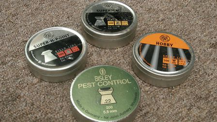 Hollow-point and flat-head pellets can be very useful for close-range hunting