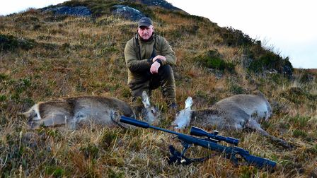 Two red hinds, shot with Blaser Pro Success in .300WM