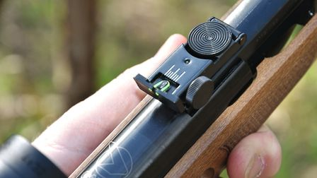 The metal rear sight is fully adjustable.