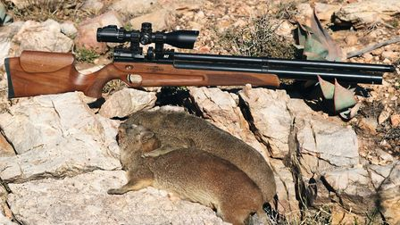 The Ataman .30 with a couple of dassie in the bag