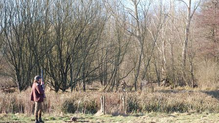 Pheasants like woodland areas where there are also light, open areas