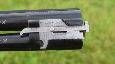 locking mechanism (part of the action)