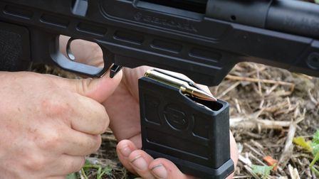rsh nov gun test 18. An ambidextrous magazine release catch spans the front of the trigger guard to