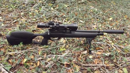 The Gamo Phox certainly looked like a solid hunting tool