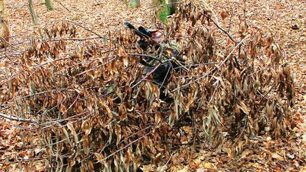 Your hide can be made of anything but make sure it blends in with the surroundings