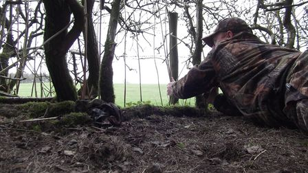 Getting low under a hedge hides your movements