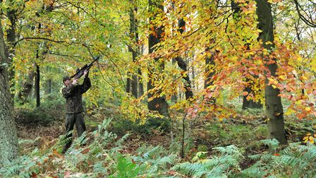 Autumn 2015, and perhaps my favourite photograph I have of me shooting.