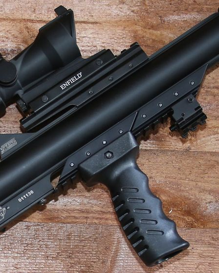 The grip plus adaptor rails. Two rails will be included with the Tac-1 Pac, but you can order more a