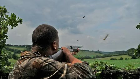 The secret to success when pigeon shooting is a great decoy pattern... allow Andy Crow to guide you