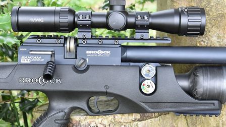 Bolt action, power adjuster, Picatinny rail and dual gauges make for a fullu spec'd rifle