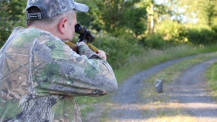 Plinking good gun - it's what airgunning is all about