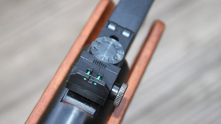 Green fibre-optic rods on the rear sight make it very modern.