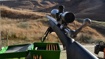 experts query savage rifle