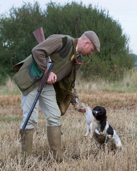 A steady, well-trained dog is such an asset in the field - be sure not to rish his introduction to g