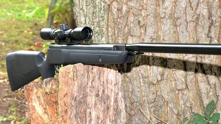 This is a long rifle which is noticed in the field