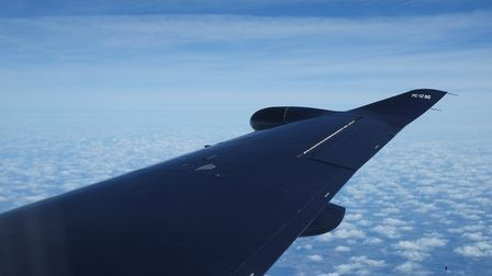 The PC-12's slender wings