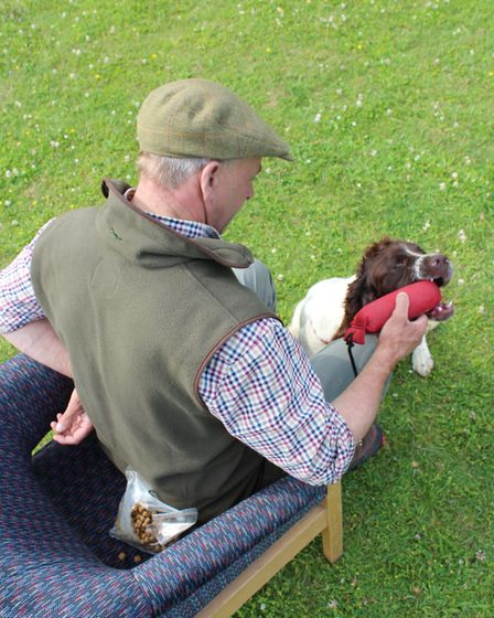 ... you can now start to layer up by encouraging the dog to grab the dummy and then hold it, before