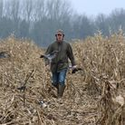 Pigeon shooting can be great fun and has the added benefits of keeping the farmer happy and providin