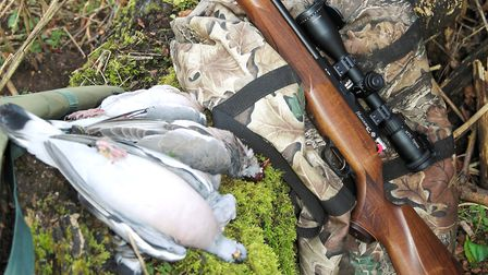 When you've done your preparation well, a few decoys and your rifle is all you'll need for some fant