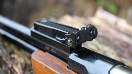 BSA have always excelled on the availability of open sights on their guns.