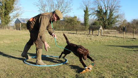 Call fetch and move forwards,ensuring there is enough slack on the lead for the dog to reach the dum