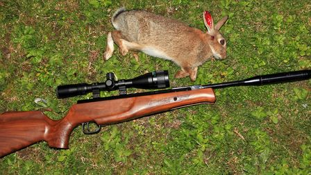 Get to know your rifle and scope combo.