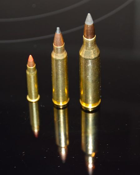 Phil worries the .17 HMR is short on punch and the .243 is his deer calibre... so is the .223 Rem (c