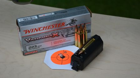 .223 Rem is accurate, affordable and available.