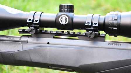 11. A rimfire with a Picatinny rail, hallelujah for versatile scope mounting and return to zero from