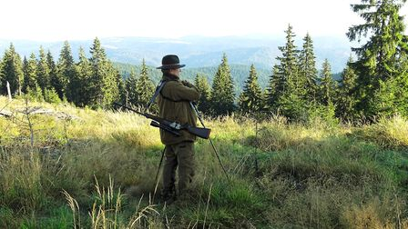red stag hunting area